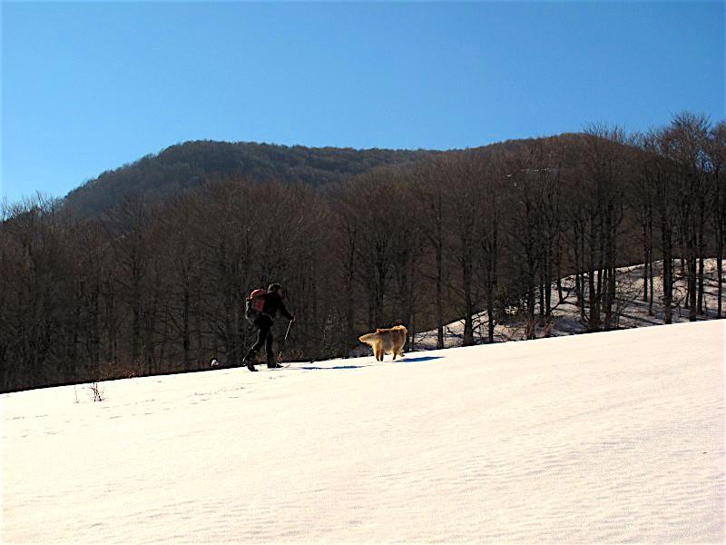 Con gli sci sul monte Arioso (Fonte foto: www.lucaninatura.it)